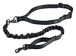 Running dog leash