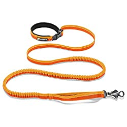 the best running leash
